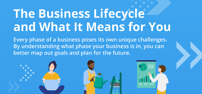 The Business Lifecycle and What It Means for You